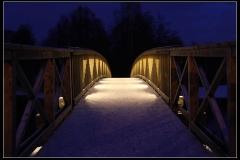 Vargbron